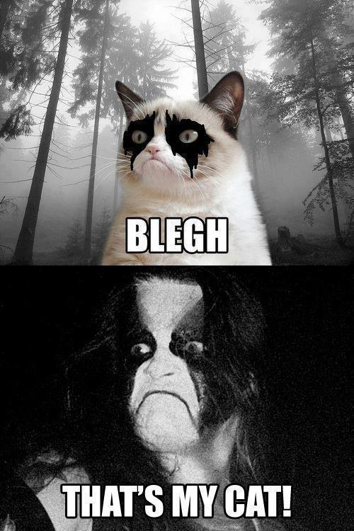 Black Metal - Sivu 13 Tumblr_mevfltszQ01ql4ob7o1_500