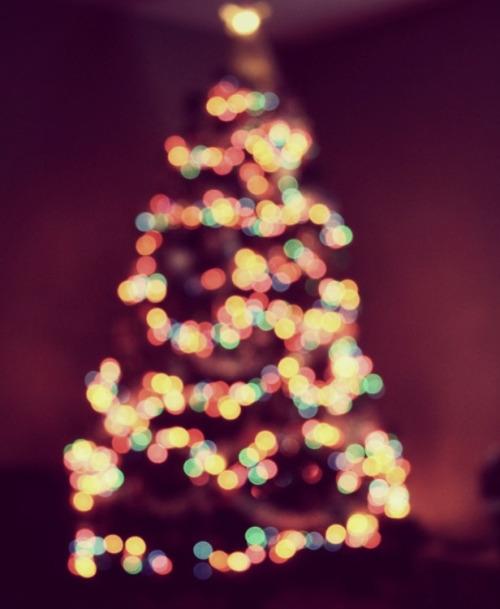Christmas! - Page 3 Tumblr_mevwoyLTyq1rnohmko1_500