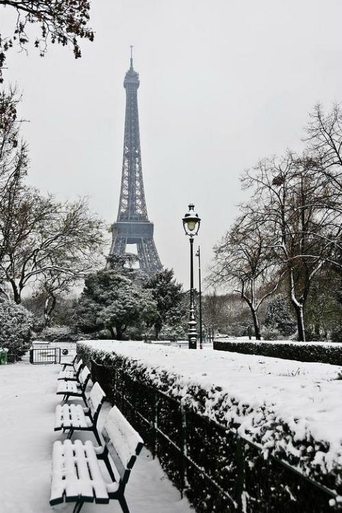 Paris city of love Tumblr_mgztnbpgb61rtp2uuo1_500