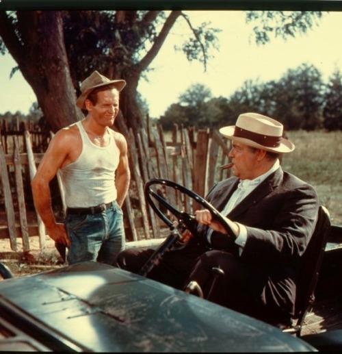 The Long, Hot Summer de Martin Ritt (1958) Tumblr_lgl6znr3oj1qcazjwo1_500