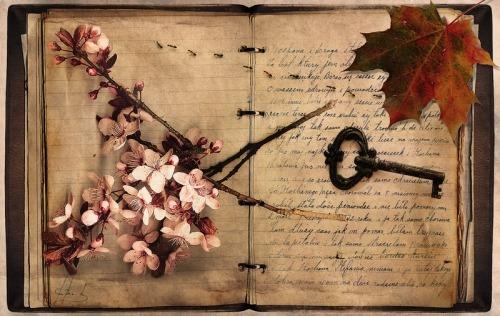 Book  - Page 2 Tumblr_lk7or0g6XI1qhkqpvo1_500