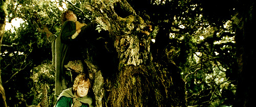 Lord of the Rings. - Page 39 Tumblr_lmsud7Pl141qed5gvo1_500