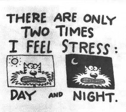 Stress psicologico: alla ricerca delle cause e dei rimedi Tumblr_lq6hnqgGkj1r1uog4o1_500
