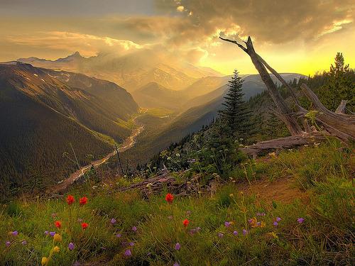 Peisaje... - Page 5 Tumblr_m3w6x23bkA1qc76t1o1_500