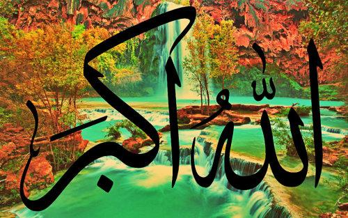 اختر بطاقه وسجل حضورك بهااااا - صفحة 3 Tumblr_m8cr18jL3u1rbpn8uo1_500