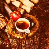 """""""Уж осень на дворе"""" (с) - Страница 2 Tumblr_m9xv9tQiEr1rxx90eo1_r2_250"""