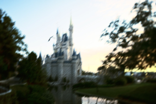 [Magic Kingdom/rumeur] Nouveau spectacle Believe In Fantasy Tumblr_mdle2uwqu81rjjpsbo1_500