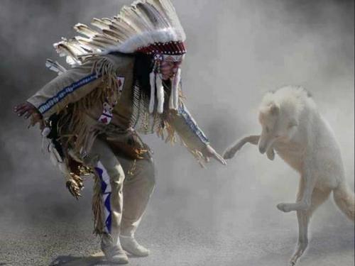 Indijanci na fotografiji i slici - Page 4 Tumblr_mdxe37gmAE1r0i719o1_500