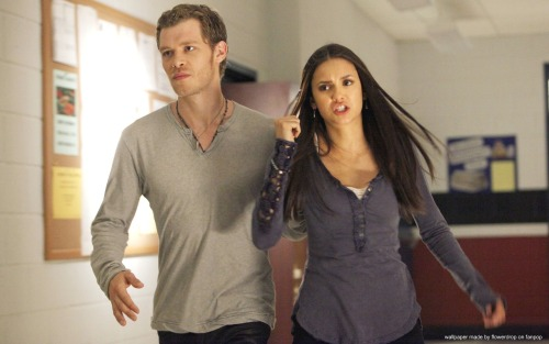 The Vampire Diaries[3] - Page 5 Tumblr_lzk3yuCD2F1qgfx3jo1_500
