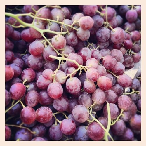Fructe..... - Page 4 Tumblr_m2rtgzty2k1qbexx1o1_500