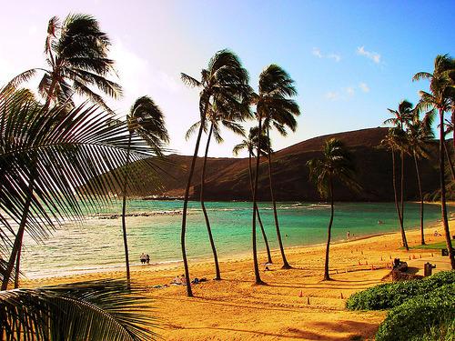 Les îles Tumblr_lvcqqwoNCW1qadknpo1_500