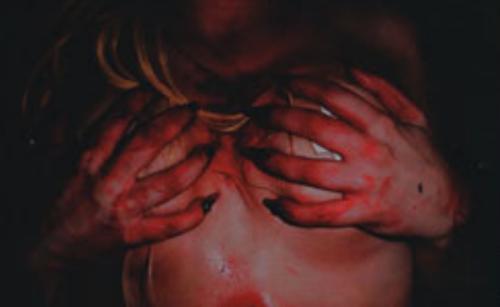 "Libro >> ""Lady Gaga x Terry Richardson"" - Página 2 Tumblr_luxalvCinQ1qd5s6do1_500"