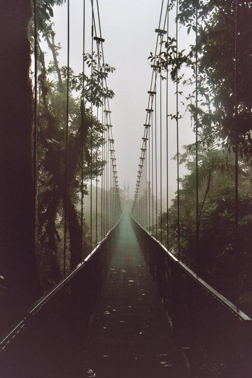 Peisaje... - Page 2 Tumblr_m1g2wyln8s1qcysh1o1_500