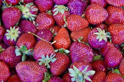 Fructe..... - Page 4 Tumblr_m2ri4t8Zq01qblesro1_500