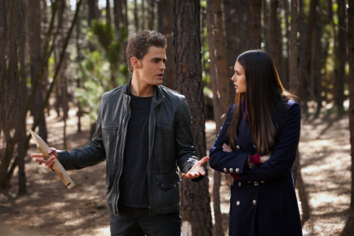 Paul Wesley and Nina Dobrev - Page 10 Tumblr_m0nysfxD3U1qgiopro1_500