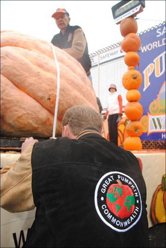 أمريكي يفوز بـ11 الف دولار بعد زراعته اكبر يقطينة تزن 773 كغم Biggest_Pumpkin_07