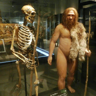 Evolution is a Lie - Intelligent Design is the Truth! Skeleton_and_restoration_model_of_Neanderthal_La_Ferrassie_1