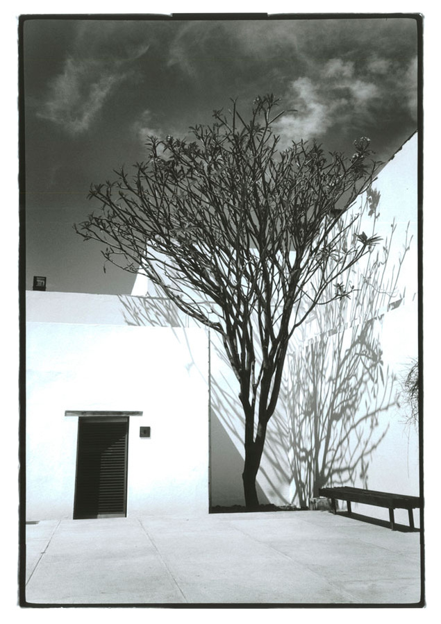 Motivos modernos (Pintura, Fotografía cosas así) - Página 4 %25C2%25A9%2BJessica%2BLange.%2Bnuncalosabre-002