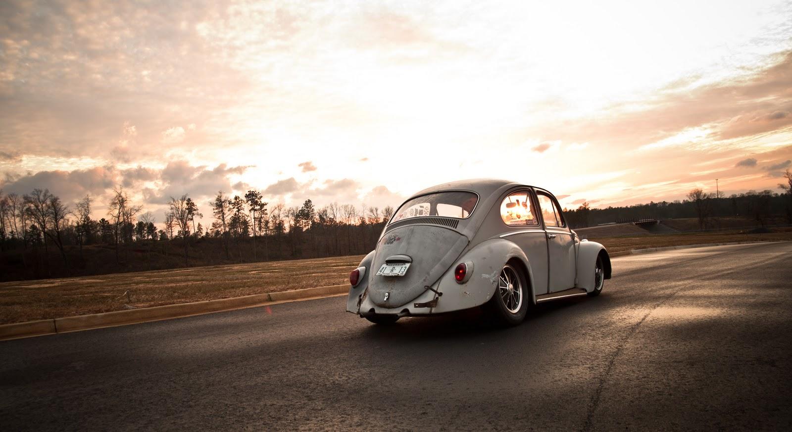 Otis - my '65 Beetle DSC_0020