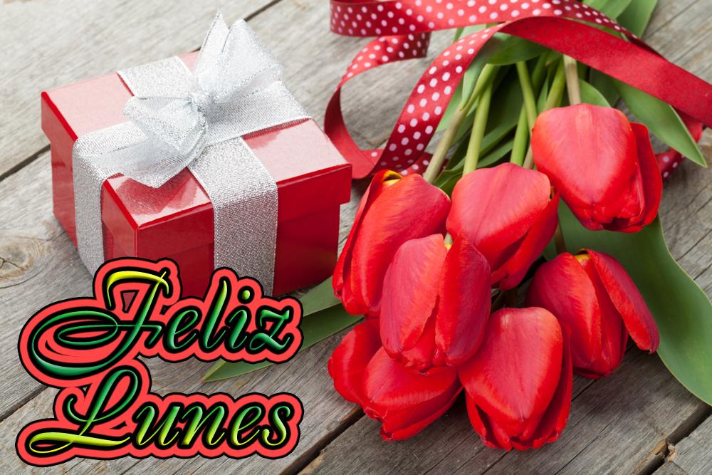 SUELY  cariñet Tulipanes-rojos-feliz-lunes-mensajes-dias-de-la-semana