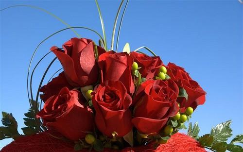 أعشقك رغم ما بقلبي آهات تألمني / صفحة خاصة / 06.red_roses_bouquet