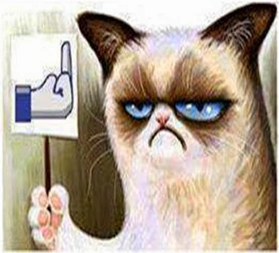 PONGA LO QUE USTED QUIERA - Página 2 Grumpy_cat_1