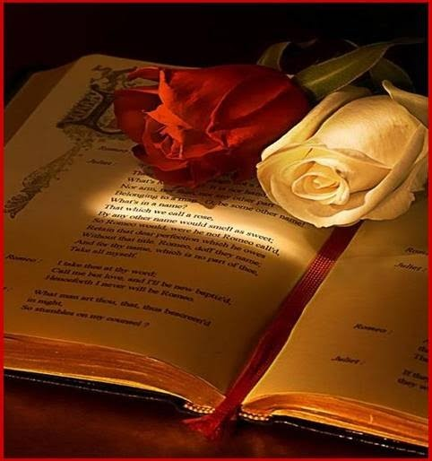 ... buenos días ¡¡¡  tarde y noche ¡¡¡... - Página 21 Libro-y-rosas