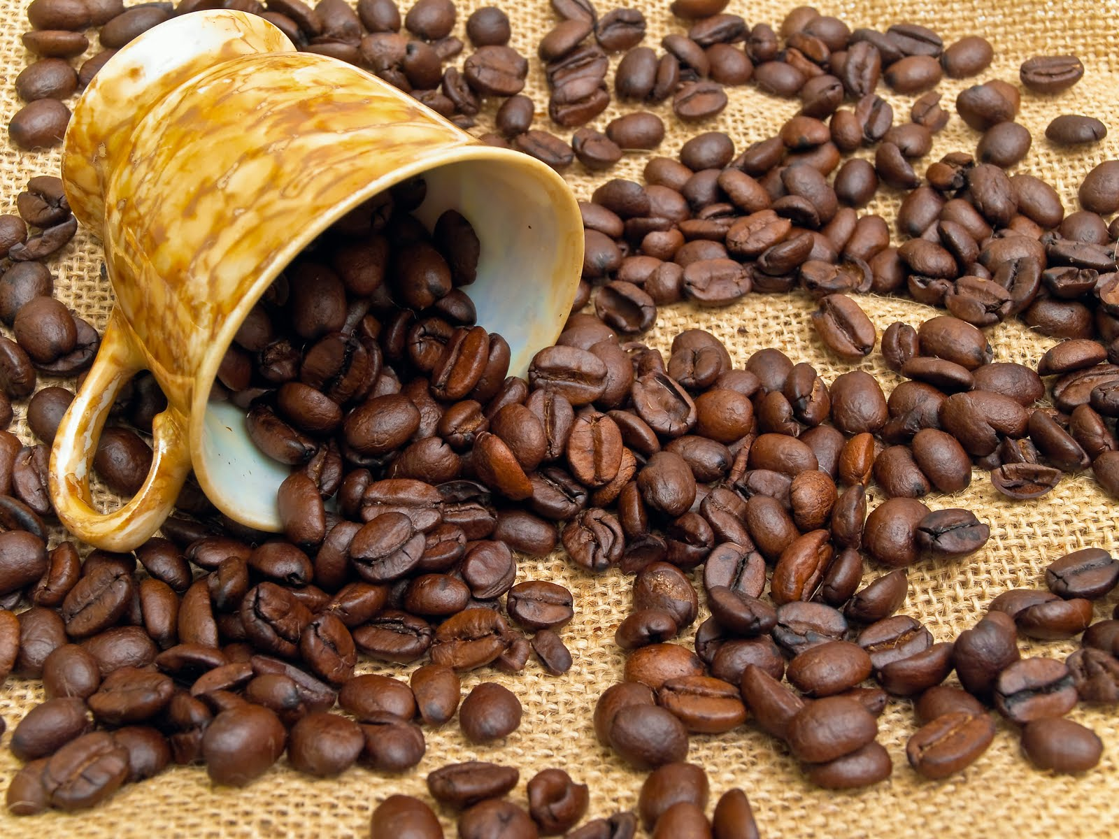 CAFETERÍA para todos Taza-con-cafe-tostado-toasted-natural-coffe-grain-