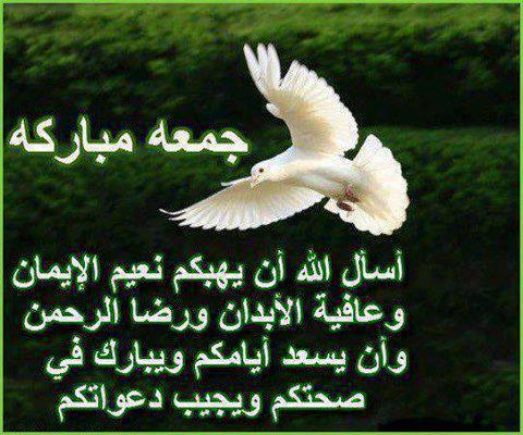 جمعة مباركة بإذن الله   - صفحة 6 Ab7c3652a9cfecdb1950cf53f126c3f5