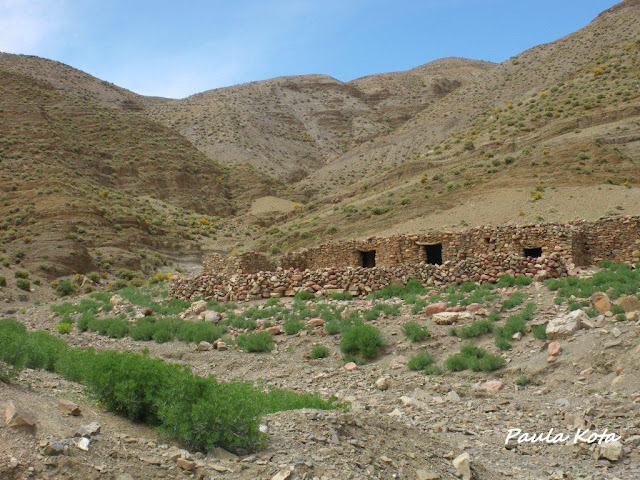 marrocos - Na Terra do Sol Poente - Viagem a solo por Marrocos - Página 2 IMGP0382