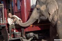 De l'eau pour les éléphants - Sara Gruen Kinopoisk.ru-Water-for-Elephants-1451970