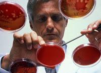 USA: des bactéries ultrarésistantes menacent la santé publique Bacteries