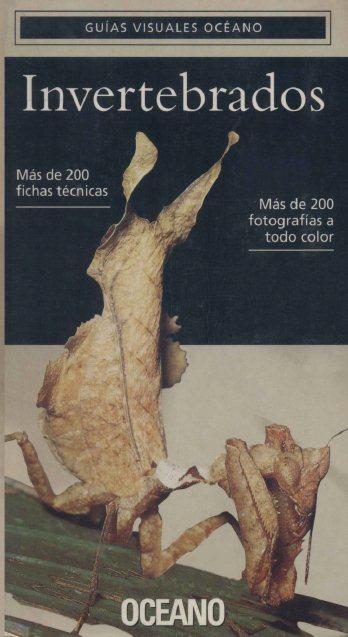 Peor portada/dibujo/ilustración de Conan A-Invertebrados-FL
