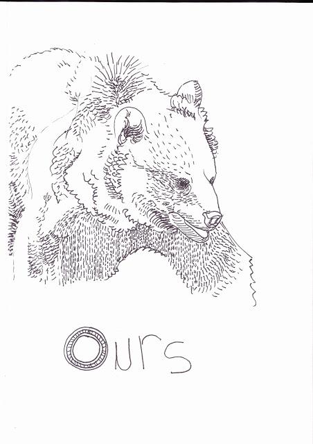 Dessins et illustrations - Page 2 IMG_0010