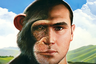 Evolution is a Lie - Intelligent Design is the Truth! Different
