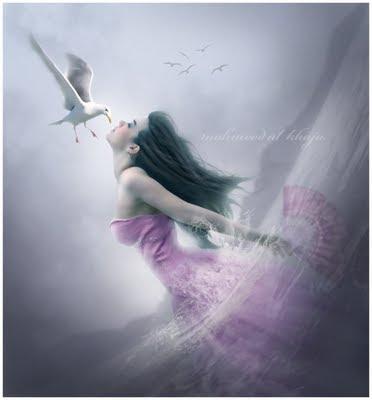 Dreams 27_10_2008_0308698001225125342_mahmood_al_khaja