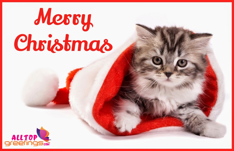 FOR ALL MY FRIENDS ON HERE  Merry%2BChristmas%2BCute%2BWallpapers%2B-%2BAllTopGretings