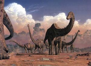 أي الحيوانات البرية كان الأضخم على مر الزمن؟!..  Seismosaurus1140897792