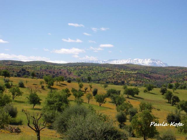 marrocos - Na Terra do Sol Poente - Viagem a solo por Marrocos - Página 2 IMGP0419