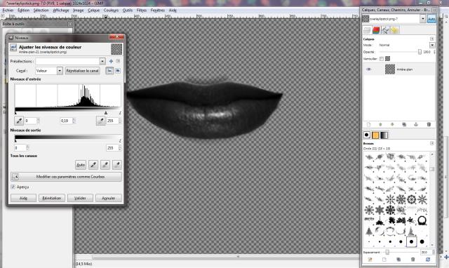 [Intermédiaire] Créer un rouge à lèvres Tuto16