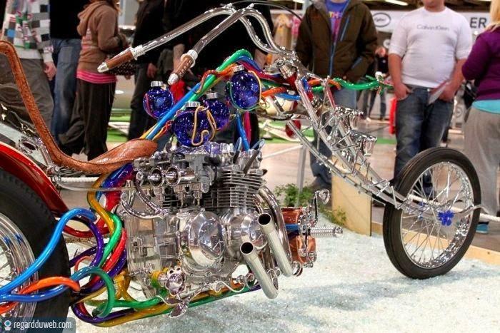No limit à l'imagination pour les motos, Humour of course! - Page 40 Humour-drole-insolite-transport-moto-harley-davidson1