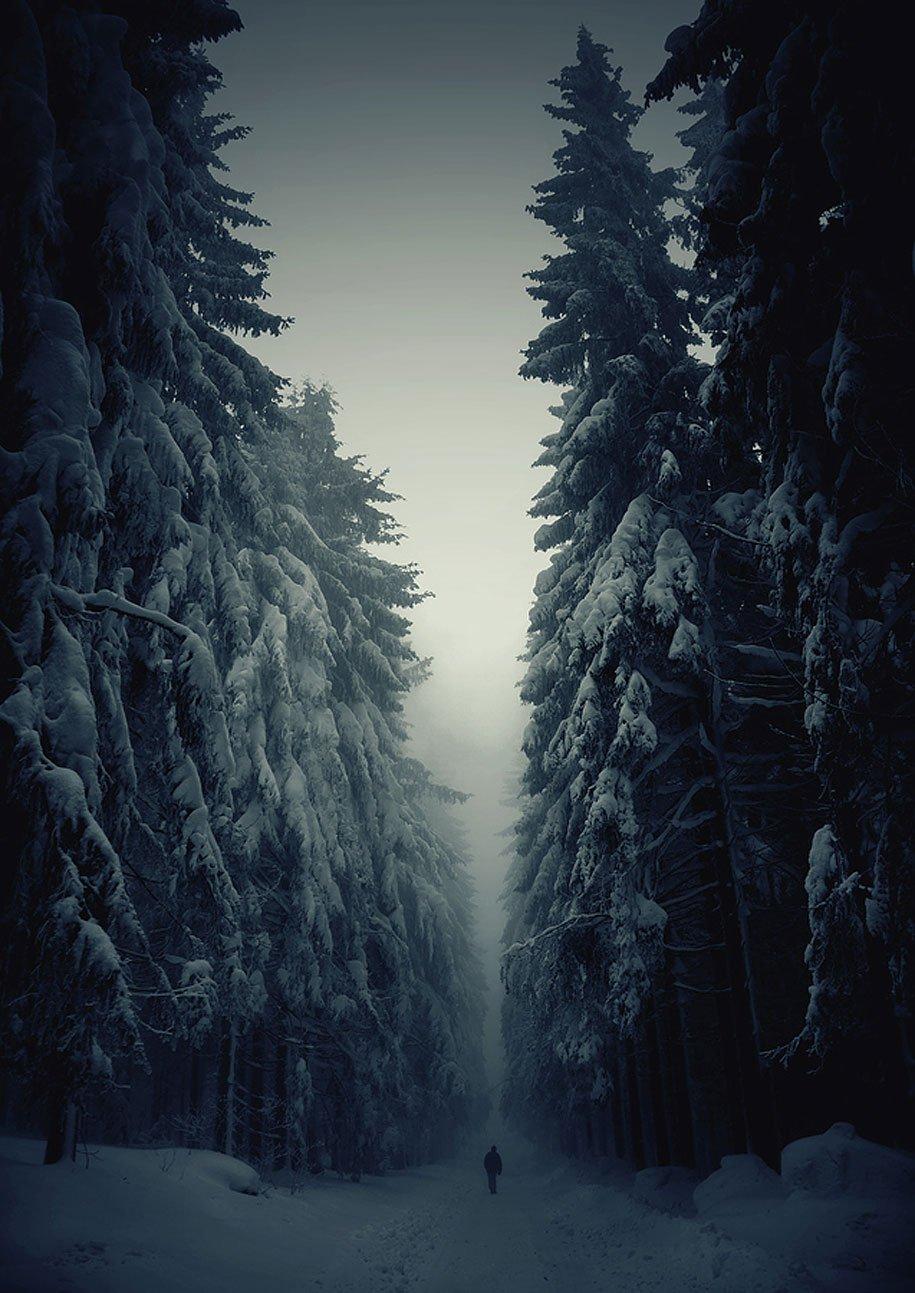 اجمل صور الطبيعه بلشتاء Winter-landscapes-1