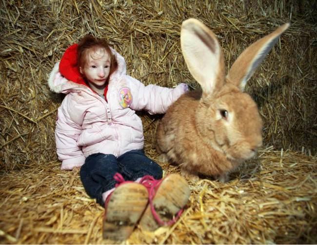 بالصور والفيديو.. أصغر طفلة في العالم ترتدي ملابس الدُمى ! 16