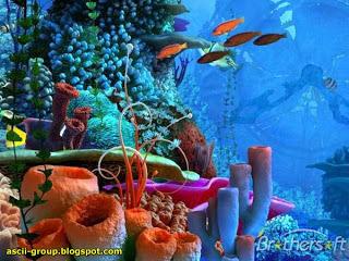 الأحجار الكريمة و معانيها 0000_0bonaire-flower-coral_
