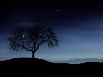 POEMAS SIDERALES ( Sol, Luna, Estrellas, Tierra, Naturaleza, Galaxias...) - Página 5 Noite