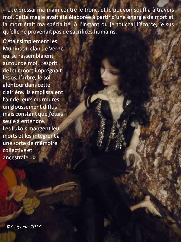 AB Story, Cirque:T24 ep7 p 51/E8 p 52/+E9 p 52 - Page 7 Diapositive21