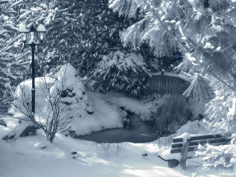 Snežne čarolije 40194303.snowscene