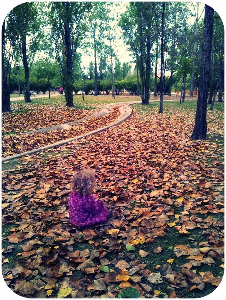 ... Y caen las hojas, llega ....¡¡¡ EL Otoño !!! - Página 6 1