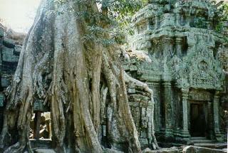 Los templos mas impresionantes de la historia que aún podemos visitar Angkor1