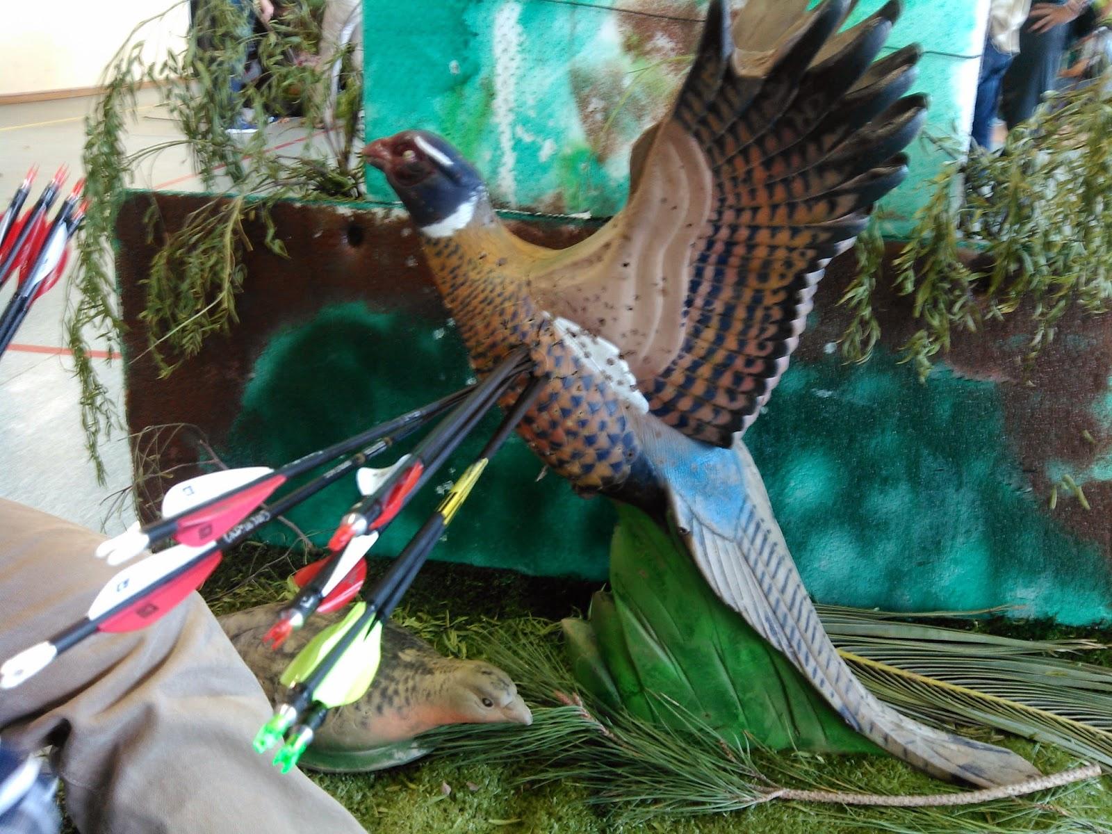 Vanes XS-Wings - Montage et tests des 70 mm sur Aurel Agil IMG_20150301_145741
